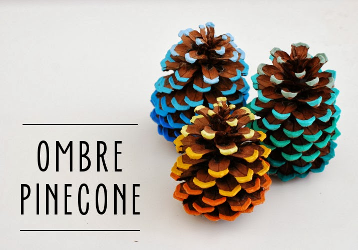 Whimzeecal - Ombre  Pinecone Tutorial